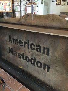 American Mastodon Dig Site
