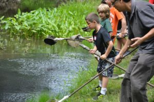 pond_dipping_3